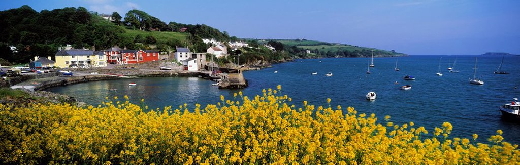 Glandore Village & Harbour, Co Cork, Ireland : Stock Photo