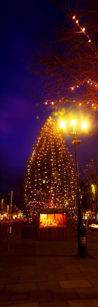 Stock Photo: 1812-12186 Christmas Tree And Nativity, O´connell Street, Dublin City, Ireland
