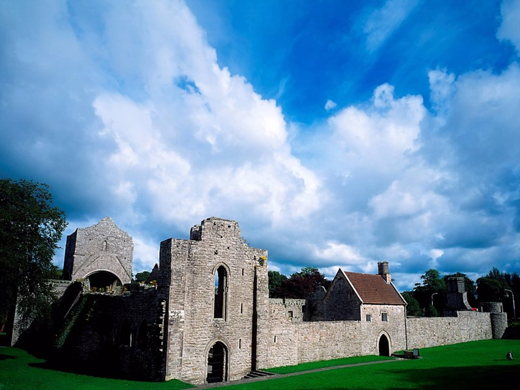 Stock Photo: 1812-12577 Co Roscommon, Boyle Abbey