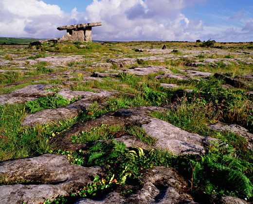 Stock Photo: 1812-1347 The Burren, Portal Dolmen, Co. Clare, Ireland