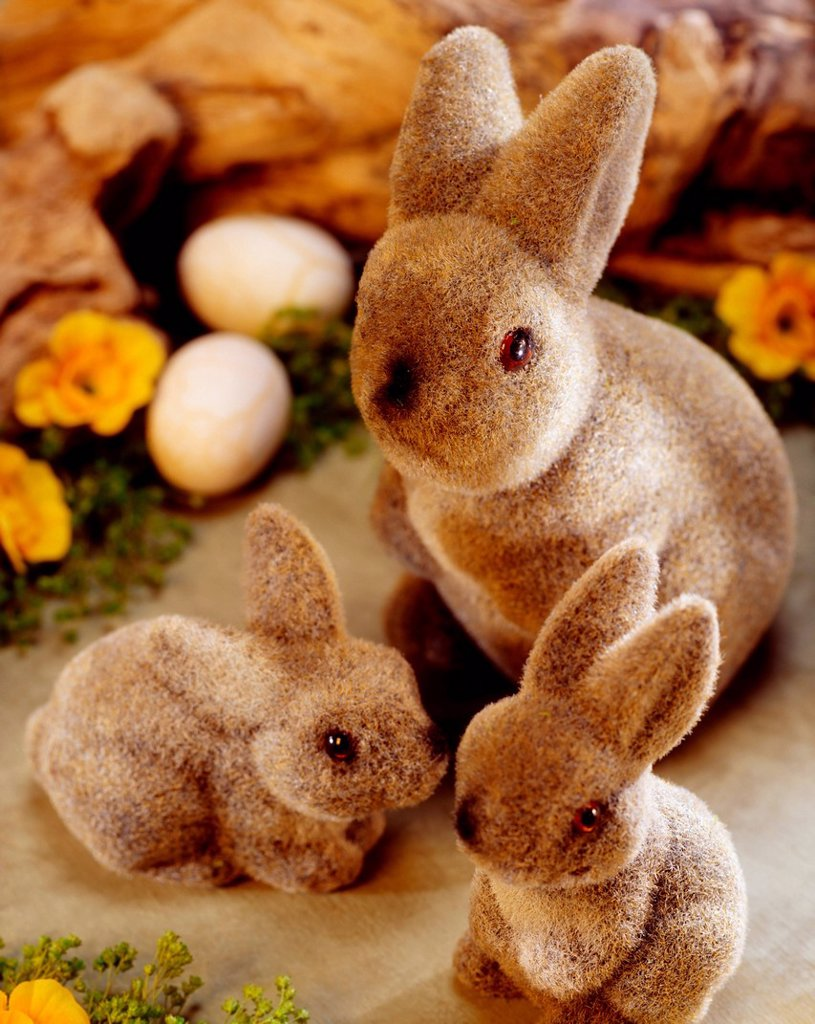 Stock Photo: 1812-14746 Easter Bunnies, Toy Bunnies