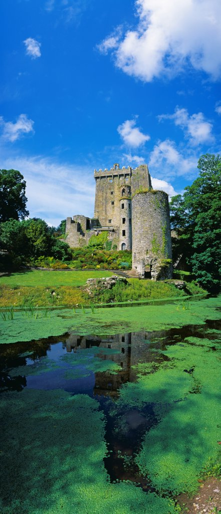 Pond In Front Of A Castle, Blarney Castle, County Cork, Republic Of Ireland : Stock Photo