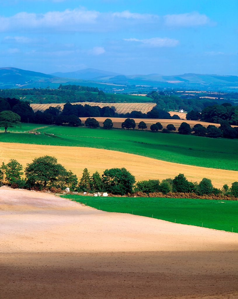 Farmscapes, Bunclody, Wexford : Stock Photo