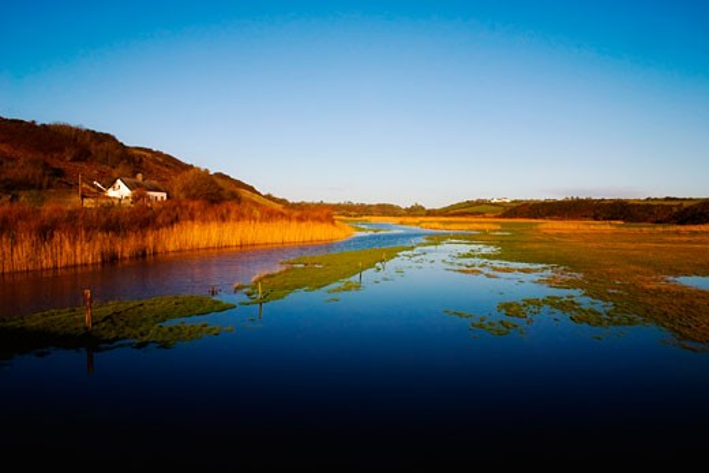 Near Annestown, Anne River, Co Waterford, Ireland : Stock Photo