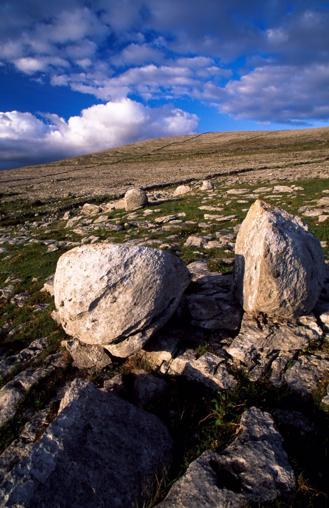 Stock Photo: 1812-17084 The Burren, County Clare, Ireland; Erratic Boulders In Field