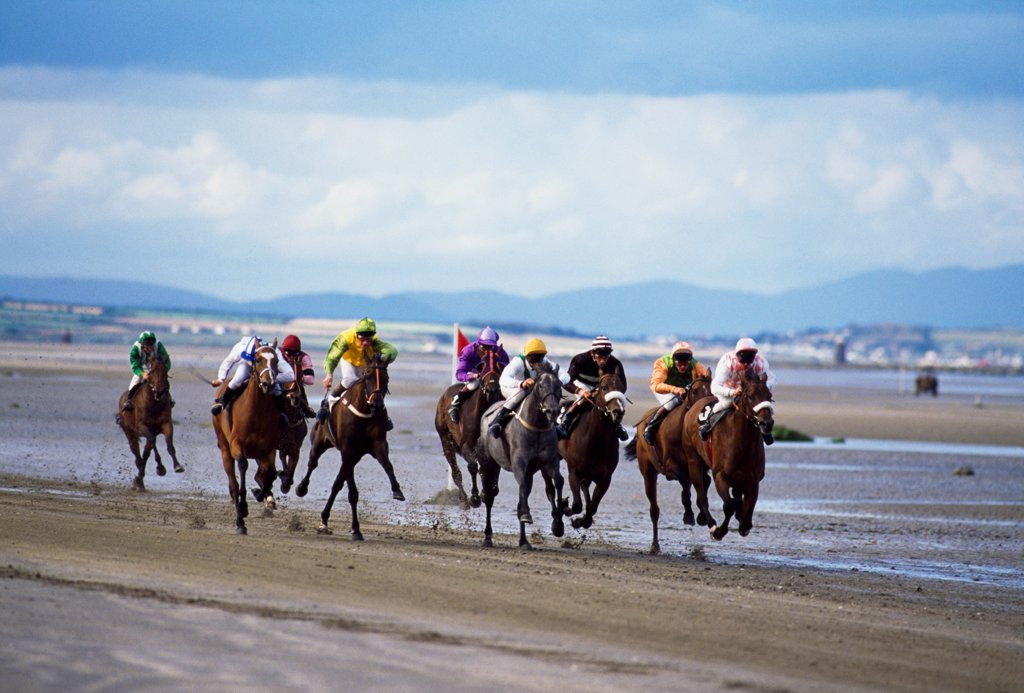 Stock Photo: 1812-17096 Horse Racing, Beach Racing At Laytown, Co Meath
