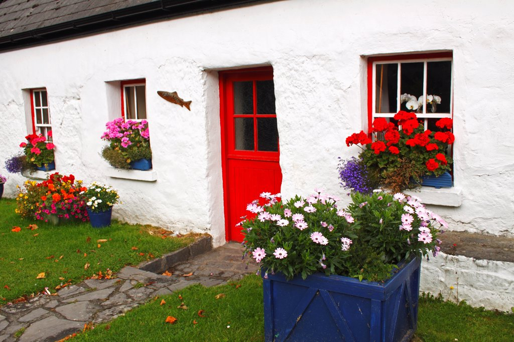 Stock Photo: 1812-19697 White Cottage With Flower Pots In Connacht Region; Oughterard County Galway Ireland