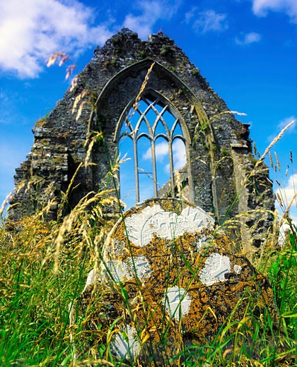 Stock Photo: 1812-2626 Athenry Dominican Priory, Co Galway, Ireland Athenry, 1Remains of lancet window from the 13th Century Priory