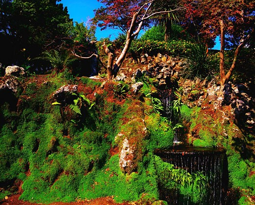Stock Photo: 1812-3166 Co Wicklow, Powerscourt Gardens, And Japanese Gardens
