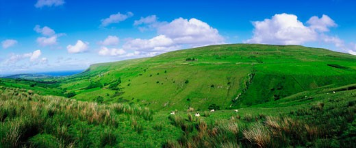 Co Antrim, Glenballyemon, Near Cushendall : Stock Photo