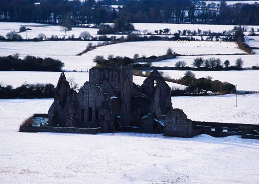 Irish Snow Scenes, CO Tipperary, Hore Abbey : Stock Photo