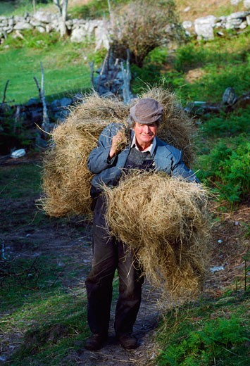 Stock Photo: 1812-3744 Traditional Farming