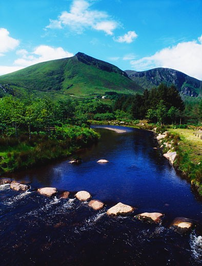 Stock Photo: 1812-4594 Co Kerry, Dingle, Owencashla River & Forest Park