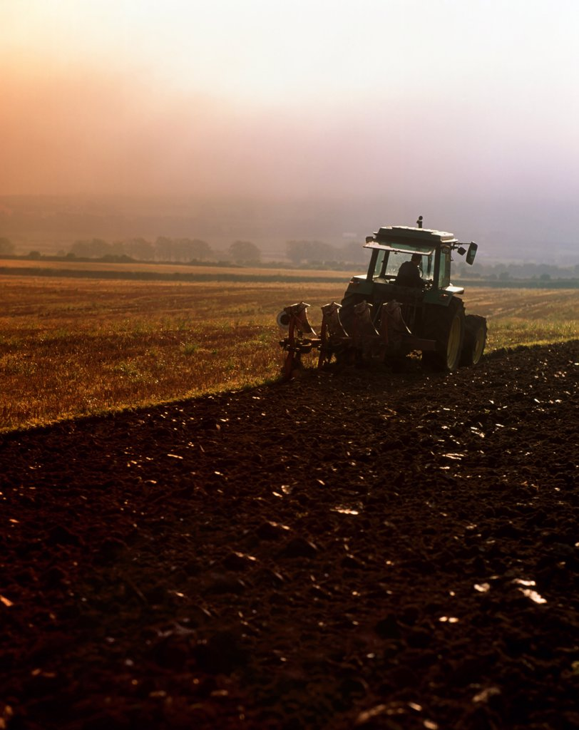Ploughing, Co Tipperary, Ireland : Stock Photo