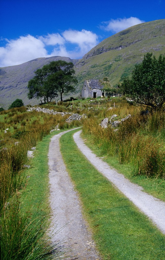 Stock Photo: 1812-5886 Black Valley, Killarney National Park, County Kerry, Ireland; Boreen in park