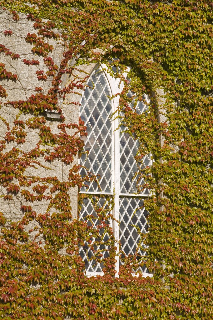 Stock Photo: 1812-5975 Enniseag church, County Kilkenny, Ireland; Architectural detail of church window