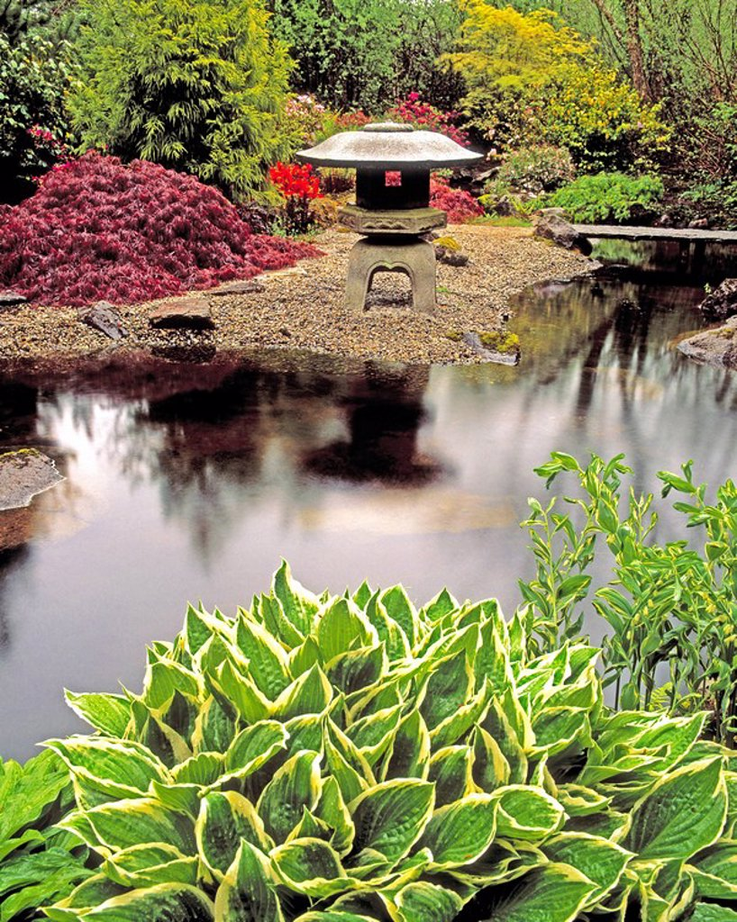 Japanese Garden, Ardcarrig, Co Galway, Ireland : Stock Photo