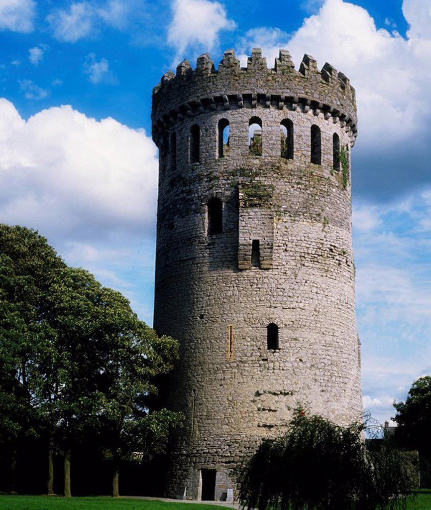 Ormonde Castle, Carrick_on_Suir, Co Tipperary, Ireland : Stock Photo