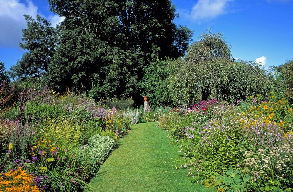 Stock Photo: 1812-7486 Butterstream Gardens, Co Meath, Ireland, Herbaceous border during Summer
