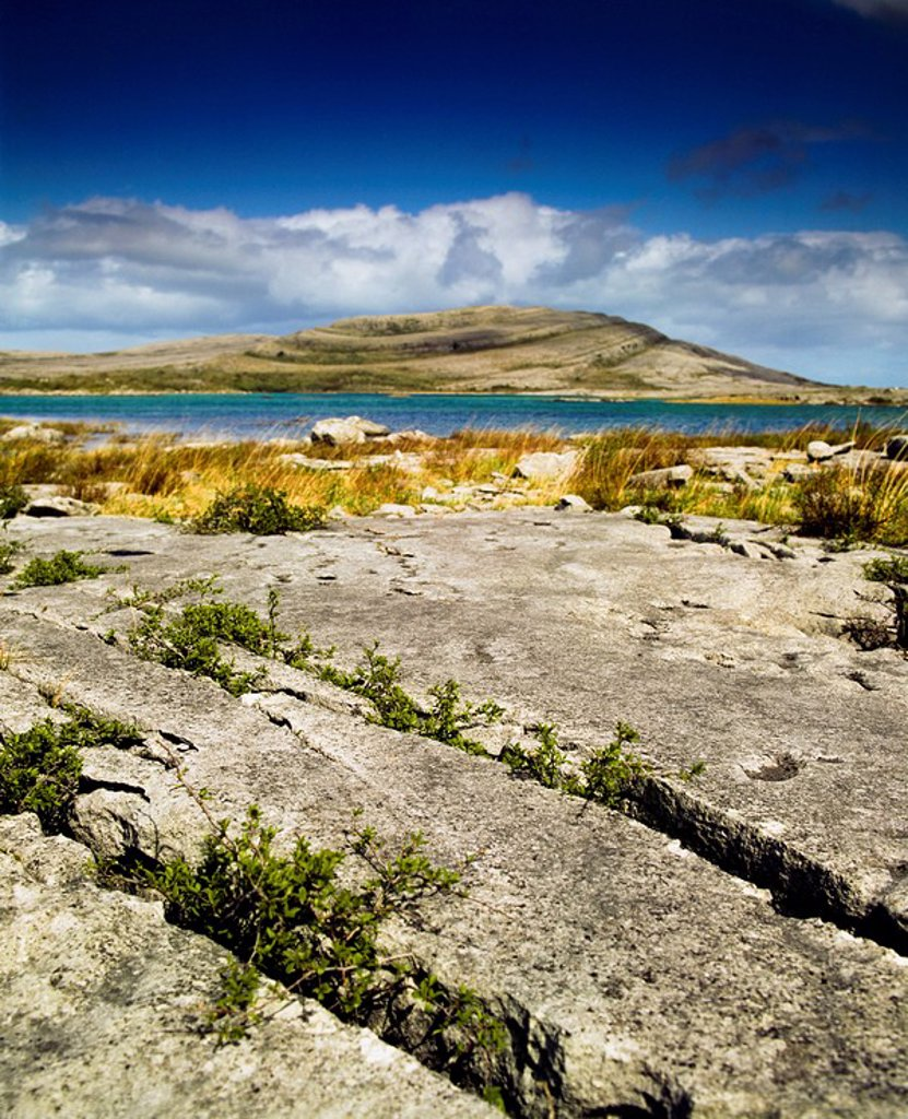 Stock Photo: 1812-9685 Mullaghmore, The Burren, County Clare, Ireland, Limestone landscape