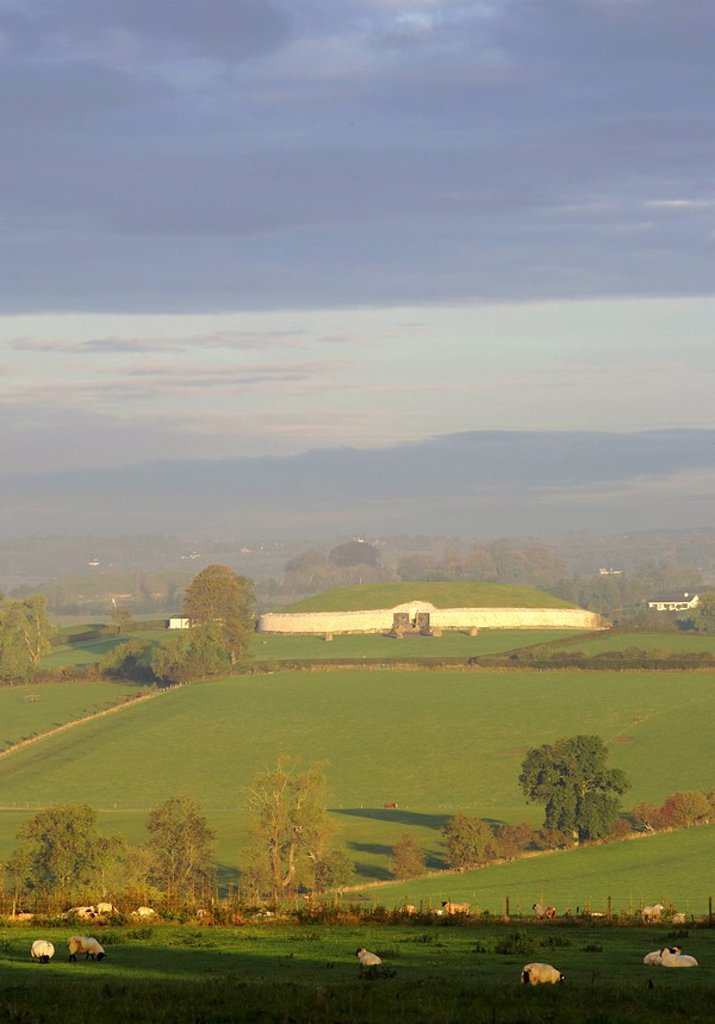 Newgrange, Boyne Valley, County Meath, Ireland, Passage tomb in distance with sheep in meadow in foreground : Stock Photo