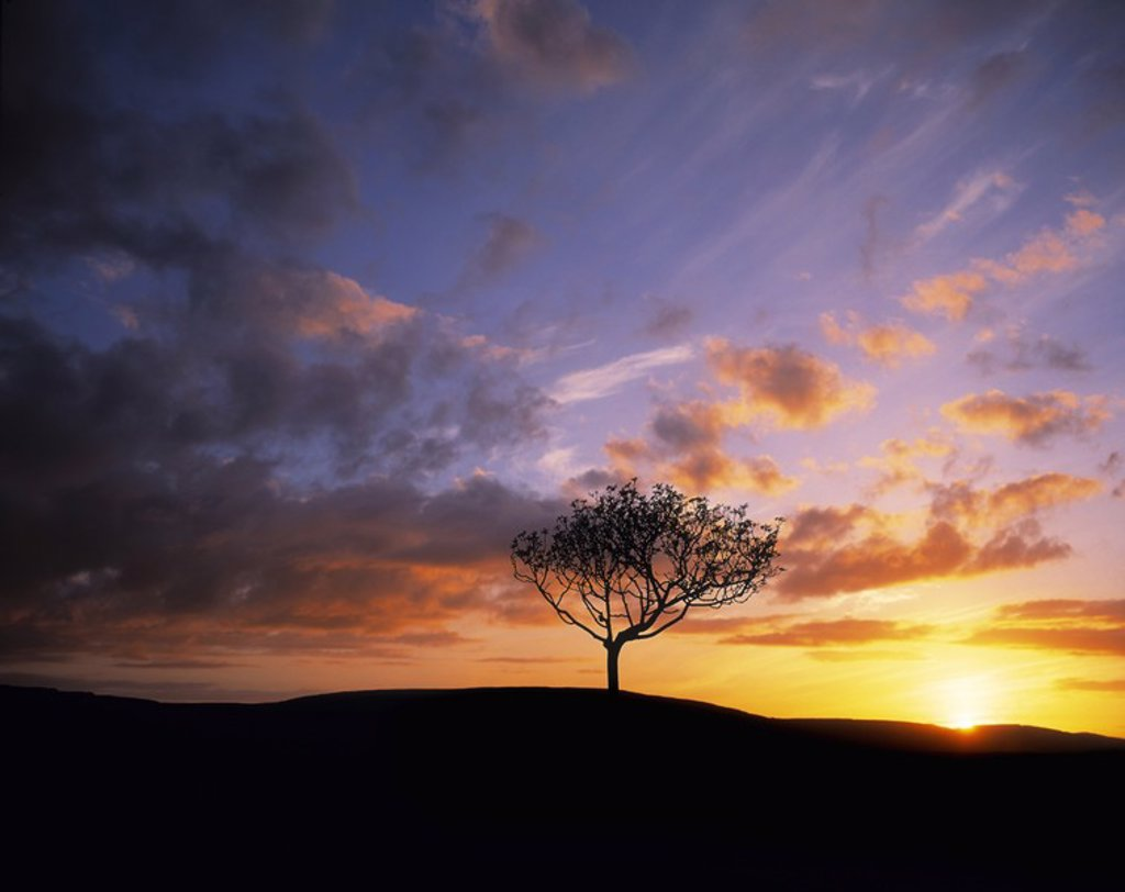 Stock Photo: 1812R-13023 The Burren near Kinvara in County Clare, Ireland