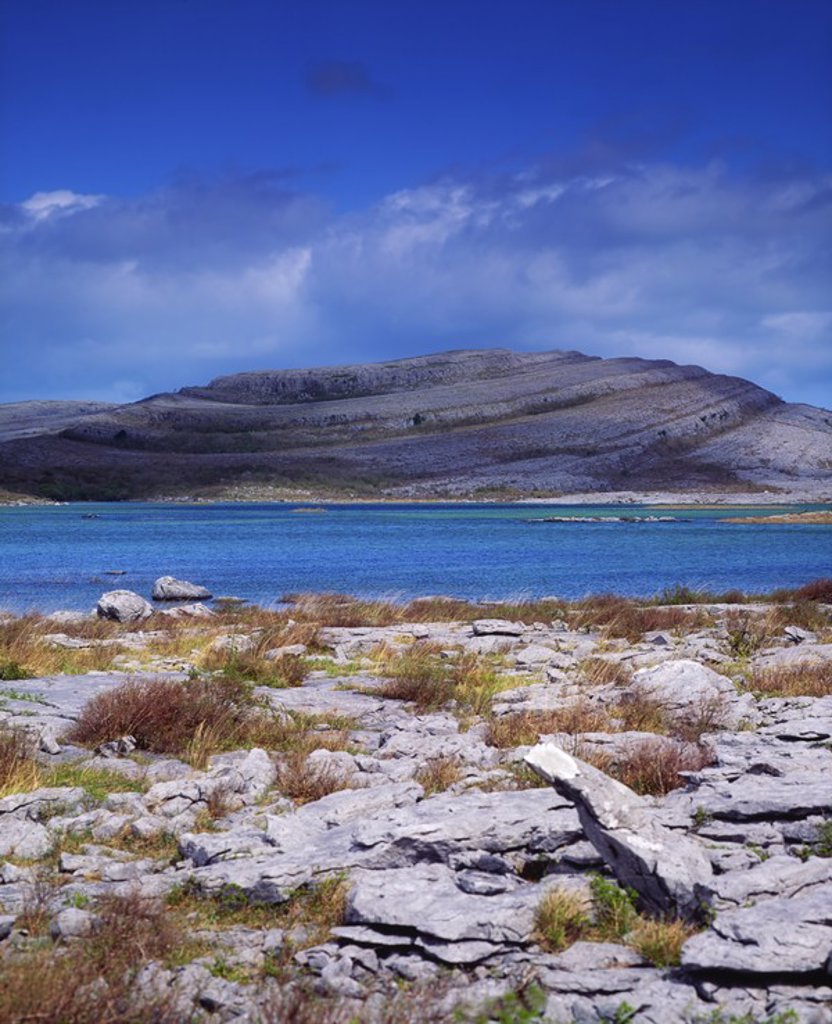 Stock Photo: 1812R-13314 Co Clare, The Burren, Mullaghmore Mountain, Turlogh in foreground, Ireland