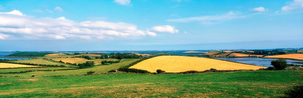 Stock Photo: 1812R-14240 Strangford Lough, Co Down, Ireland