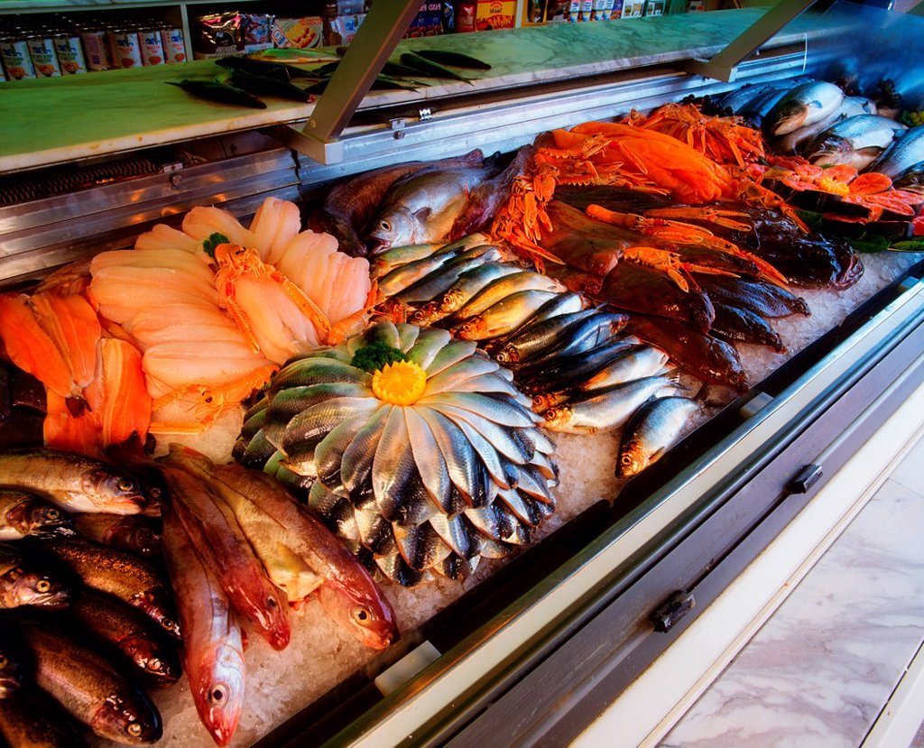 Stock Photo: 1812R-14820 Fish Display In Fishmonger´s Shop