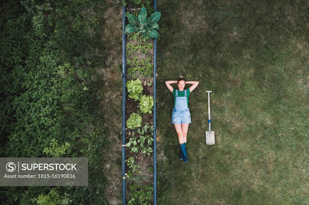 Stock Photo: 1815-16190836 Aerial view of woman lying by raised bed on land in yard