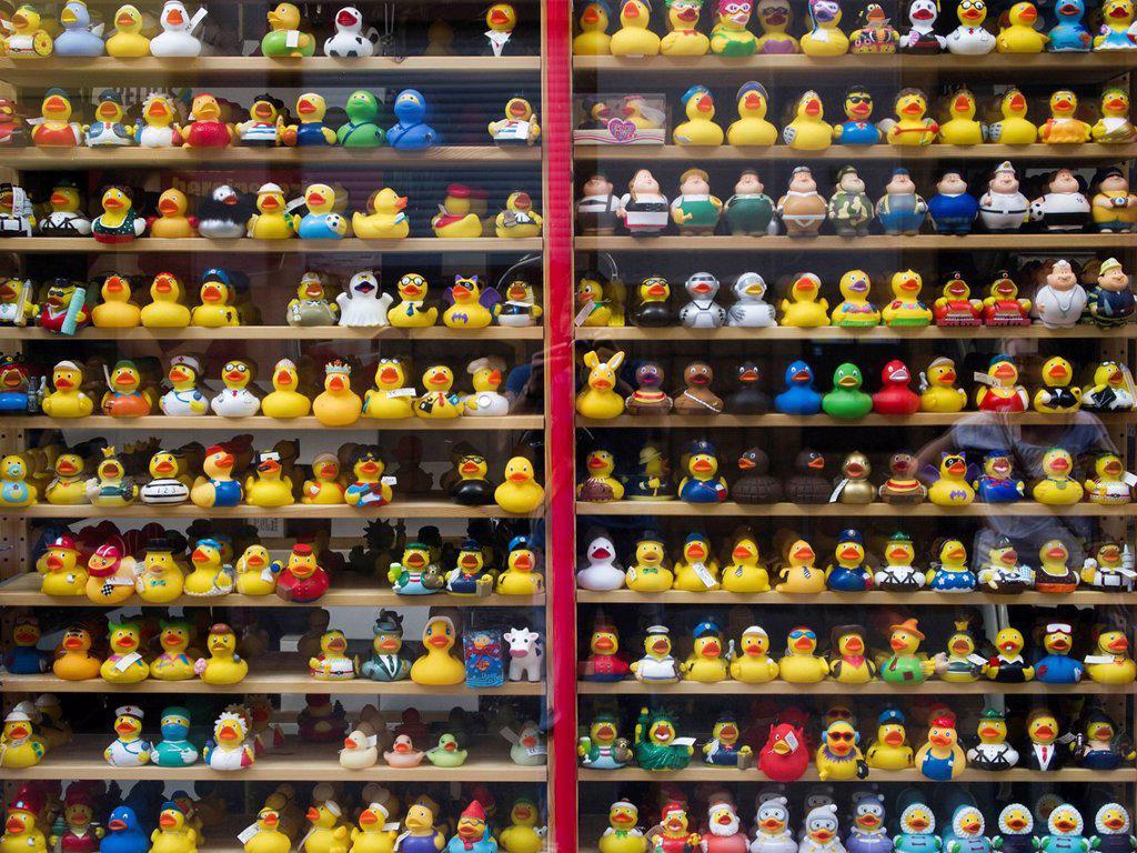 Germany, Hessen, Frankfurt, Variety of rubber duck toys on window display : Stock Photo