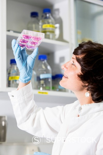 Stock Photo: 1815-147250 Germany, Munich, Scienist evaluating samples