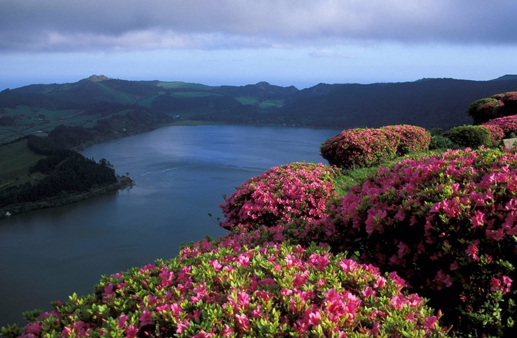 Valley of Furnas, Sao Miguel, Azores : Stock Photo