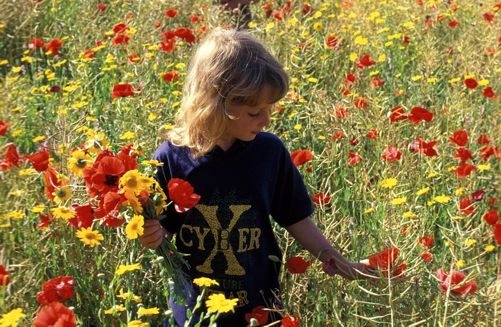Stock Photo: 1815-38862 picking flowers
