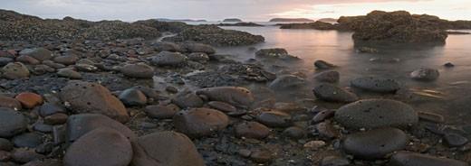 New Zealand, North Island, Coromandel peninsula, Stony shore at twilight : Stock Photo