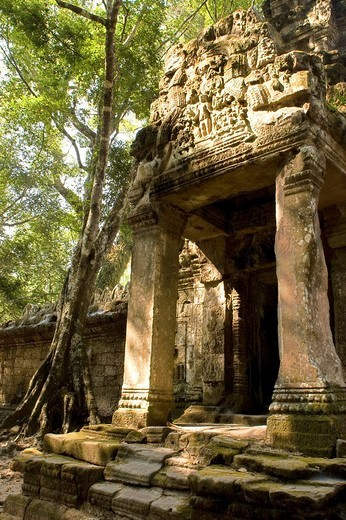 Cambodia, Angkor, Preah Khan Temple, ruins : Stock Photo
