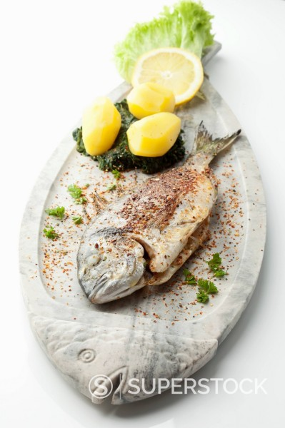 Garnished gilthead bream in plate on white background : Stock Photo