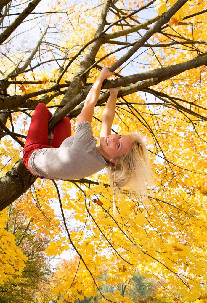 Austria, Young woman hanging on maple tree in autumn : Stock Photo