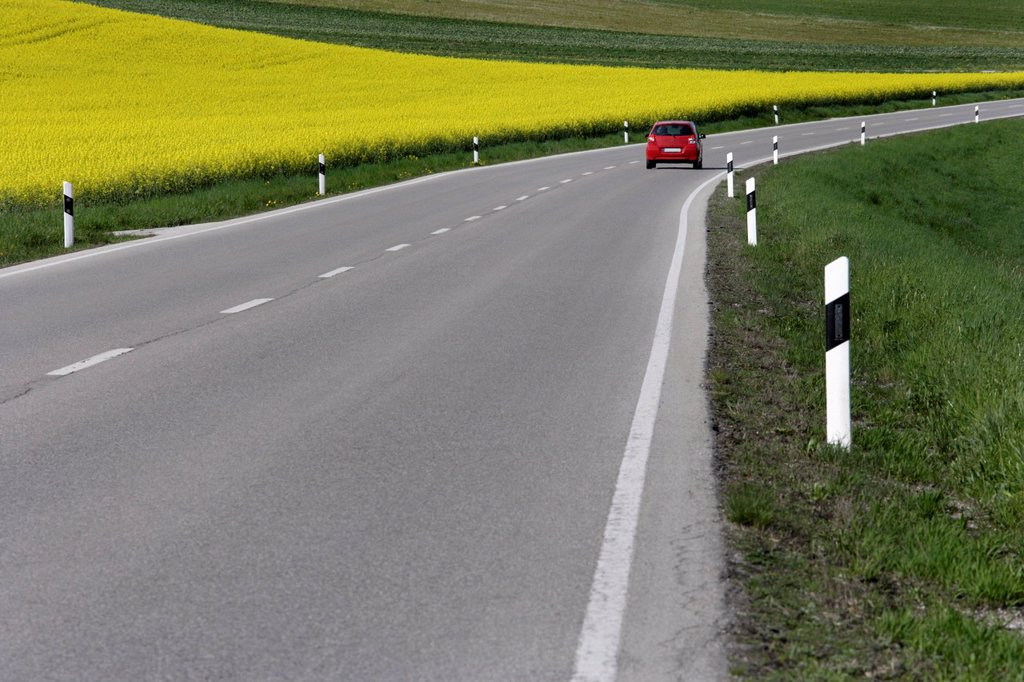 Germany, Bavaria, Car moving on road beside rape field : Stock Photo