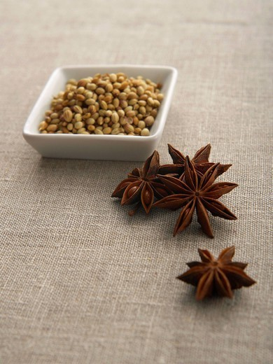 Chinese star anise and mustard seed, close up : Stock Photo