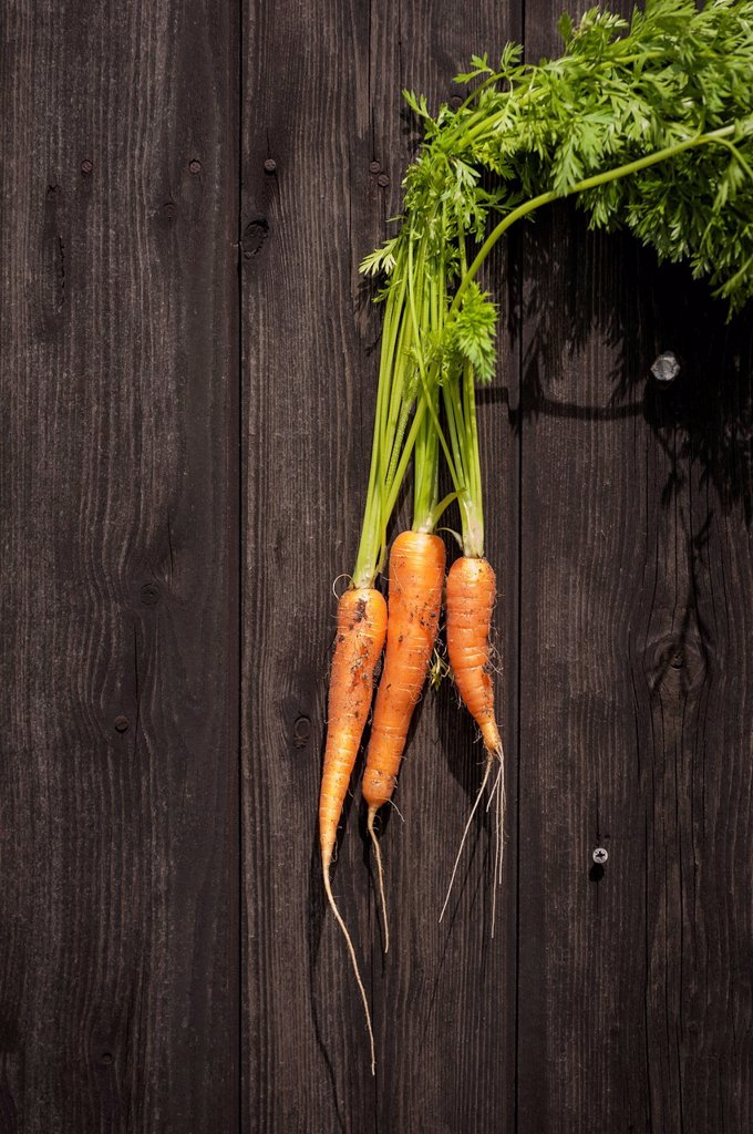 Stock Photo: 1815R-106877 North Rhine Westphalia, Close up of carrots on table