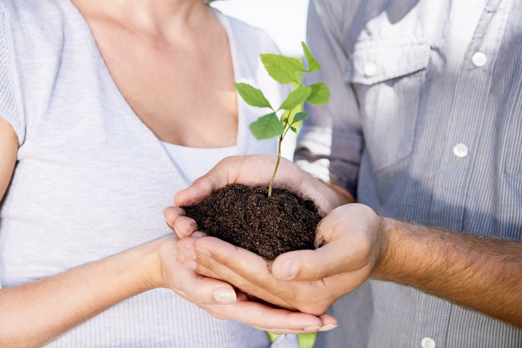 Stock Photo: 1815R-109331 Germany, Cologne, Young couple holding seedling