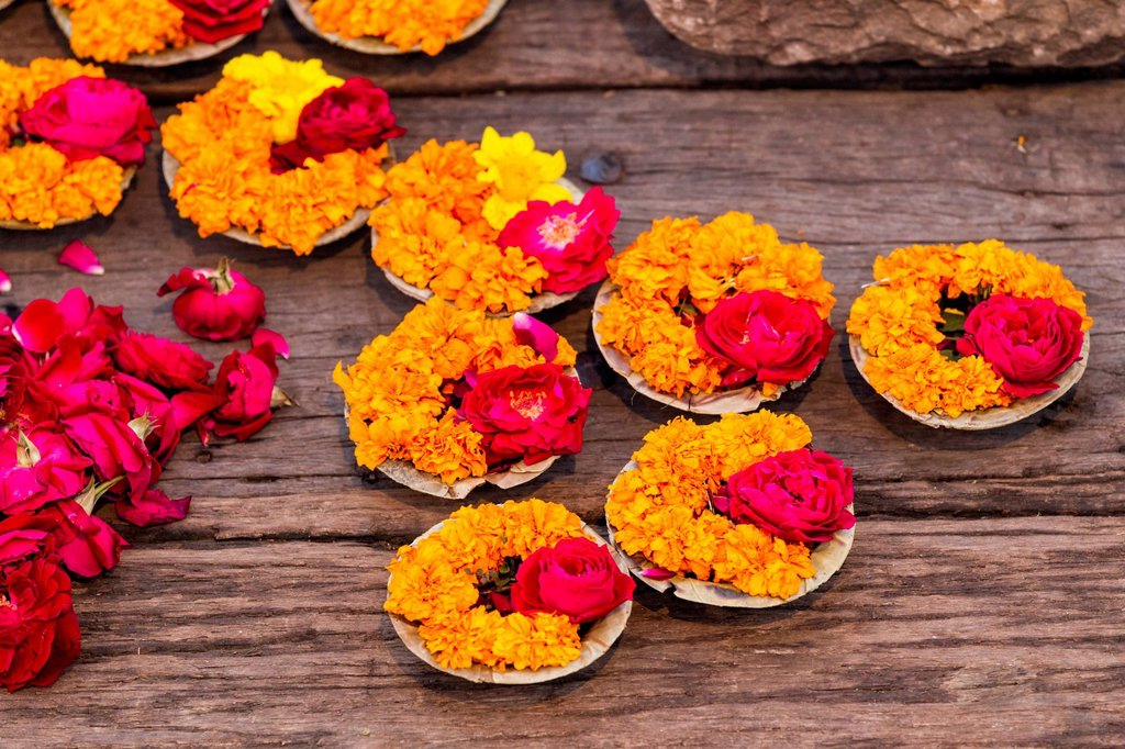 India, Uttar Pradesh, Leaf bowls with flowers and oil lamp for Aarti at Ganges river : Stock Photo