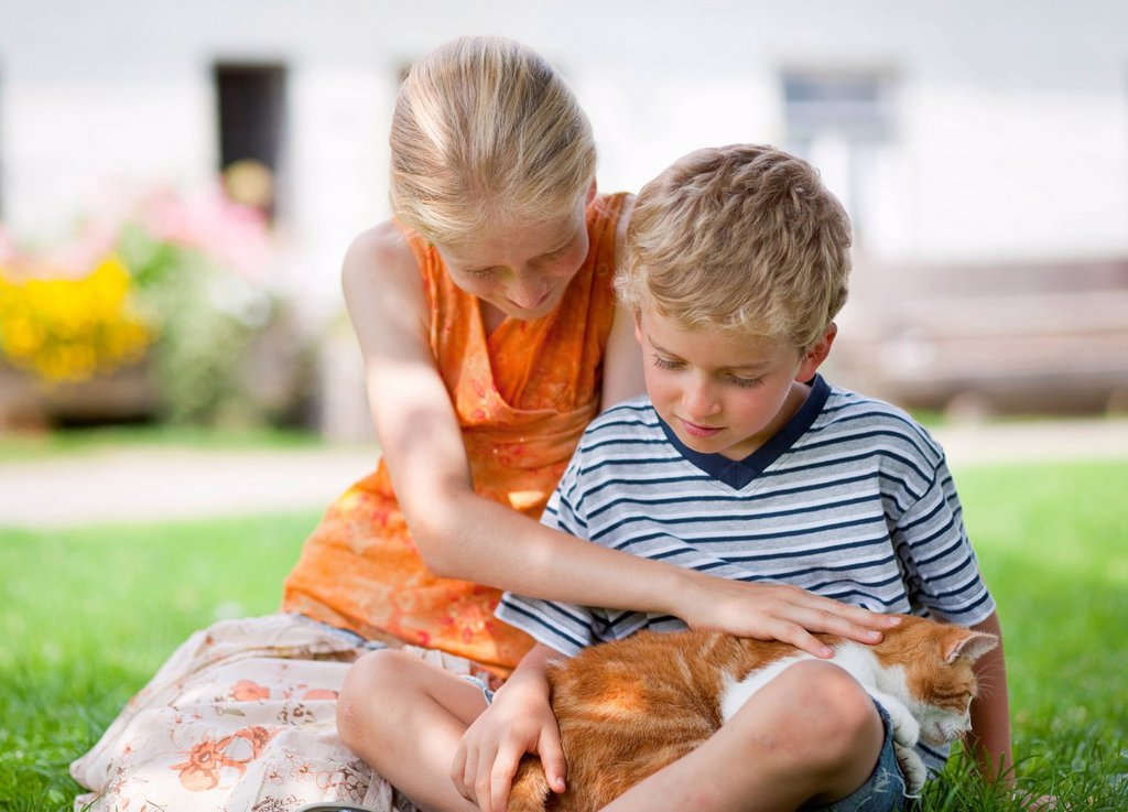 Germany, Bavaria, Boy and girl with cat on farm : Stock Photo