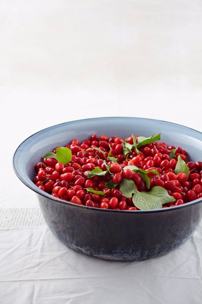 Stock Photo: 1815R-112721 Bowl full of cornel cherries on table