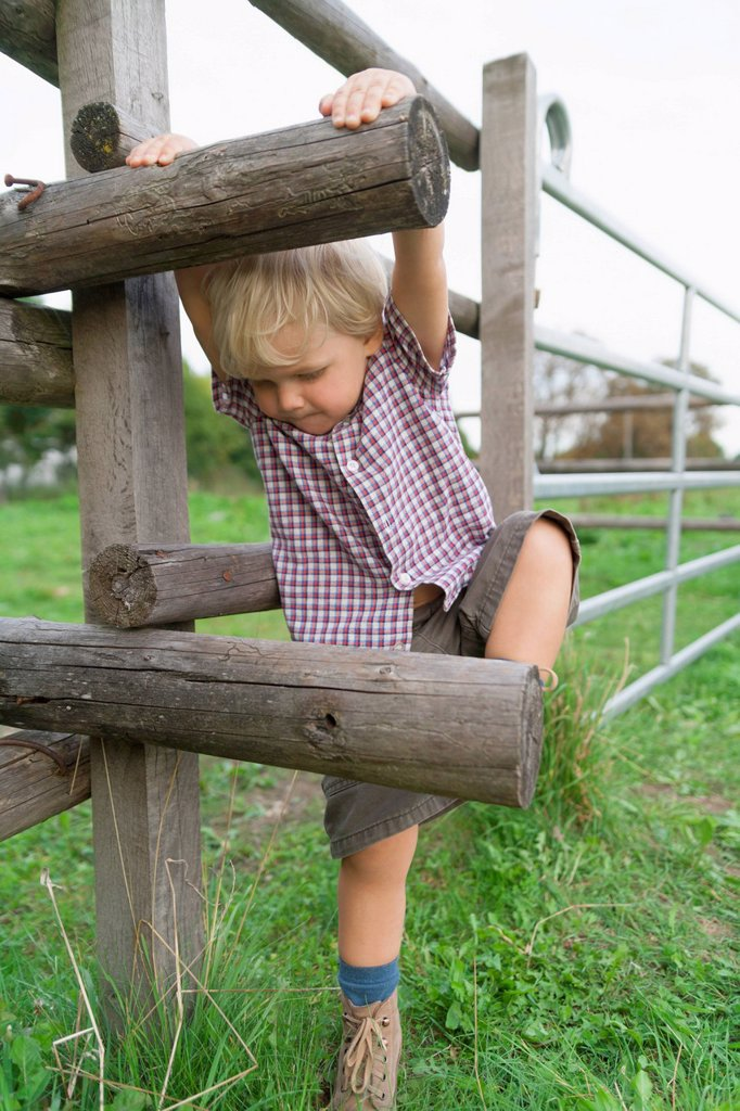 Stock Photo: 1815R-113150 Germany, Munich, Boy climbing wooden fence in children´s camp