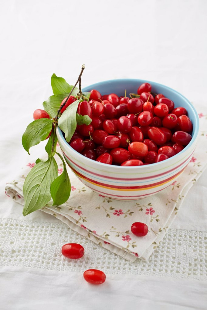 Stock Photo: 1815R-113325 Cornel cherries in bowl on table