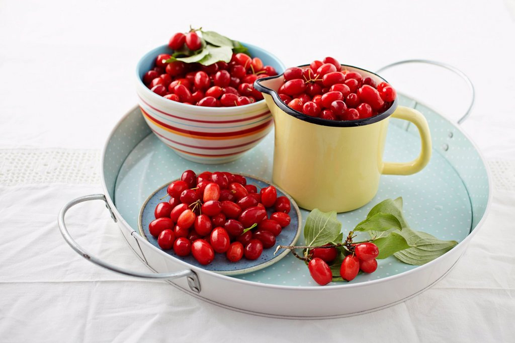 Cornel cherries in containers on tray : Stock Photo
