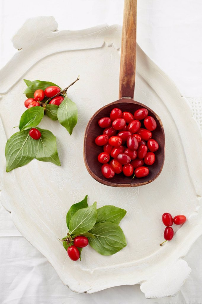 Stock Photo: 1815R-113329 Cornel cherries in wooden spoon on tray