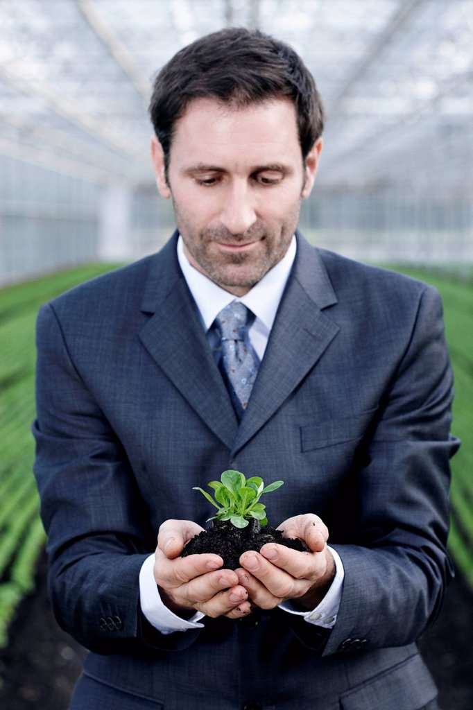 Stock Photo: 1815R-114565 Germany, Bavaria, Munich, Mature man in greenhouse with corn salad
